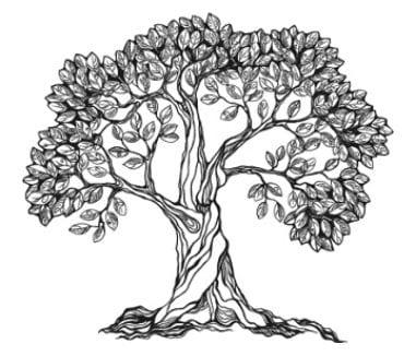 Strong Enduring Oak Tree
